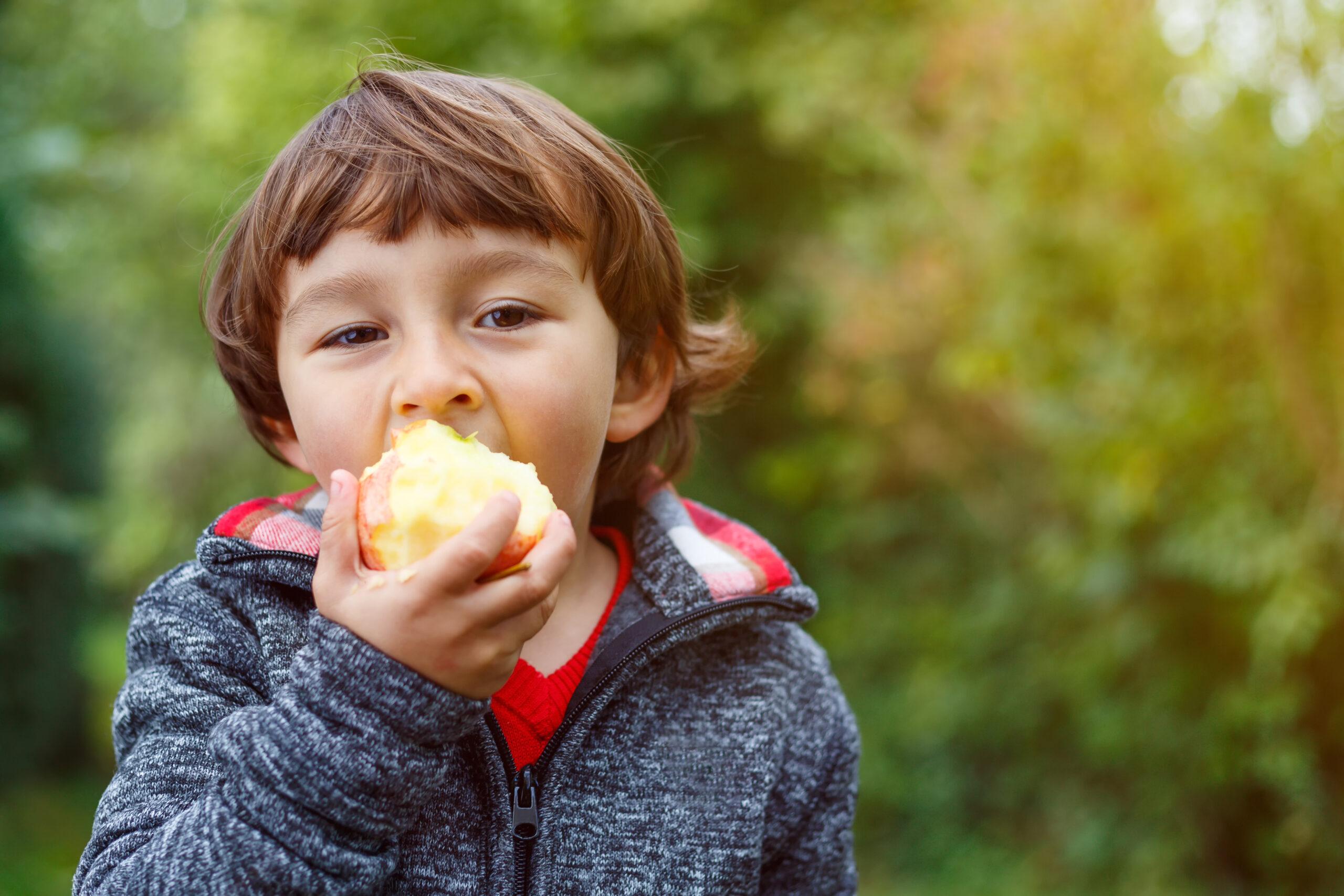 Wat is de invloed van voeding op druk, impulsief en ongeconcentreerd gedrag?